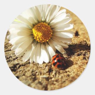 Ladybird flower classic round sticker