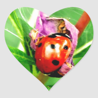 Ladybird Heart Sticker