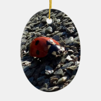 Ladybird image ceramic oval decoration