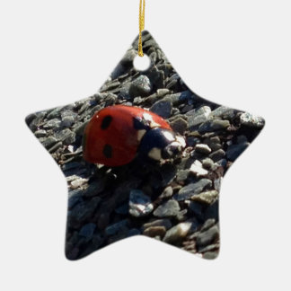 Ladybird image ceramic star decoration