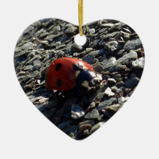 Ladybird image christmas ornament