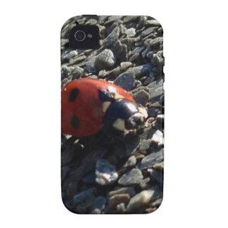 Ladybird image iPhone 4/4S cases