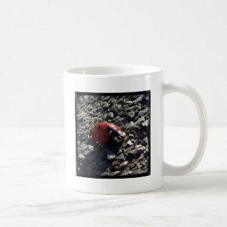 Ladybird image mugs
