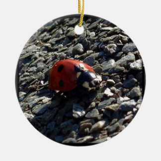 Ladybird image round ceramic decoration