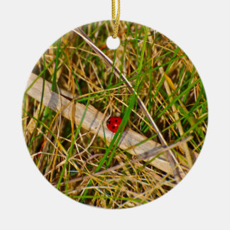 Ladybird in the grass picture round ceramic decoration