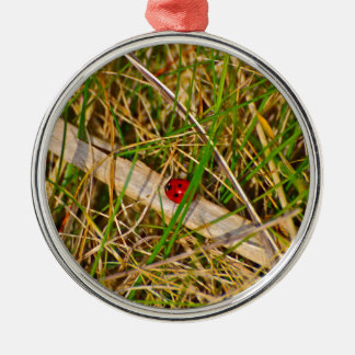 Ladybird in the grass picture Silver-Colored round decoration