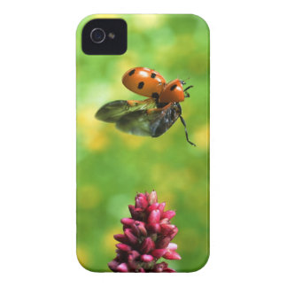 ladybird iPhone 4 Case-Mate cases