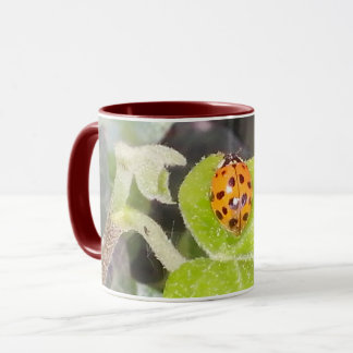 Ladybird lady nose cup