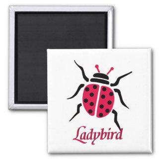 Ladybird Magnet