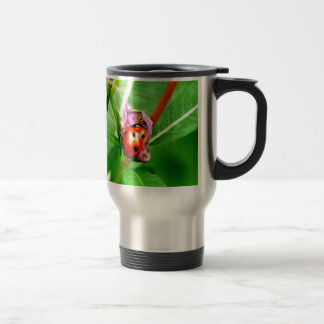 Ladybird Stainless Steel Travel Mug
