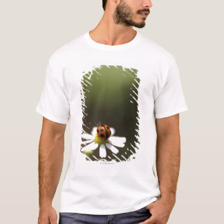 Ladybird on Chamomile Flower T-Shirt