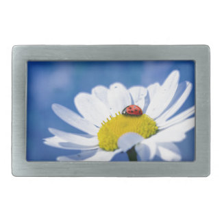 Ladybird on daisy belt buckle