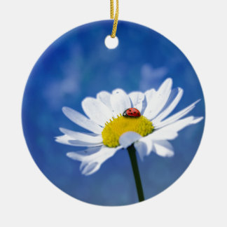 Ladybird on daisy round ceramic decoration