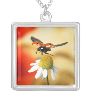 ladybird on flower 2 silver plated necklace