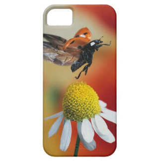 ladybird on flower barely there iPhone 5 case
