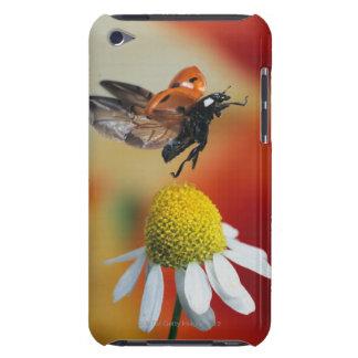 ladybird on flower iPod touch case
