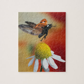 ladybird on flower jigsaw puzzle