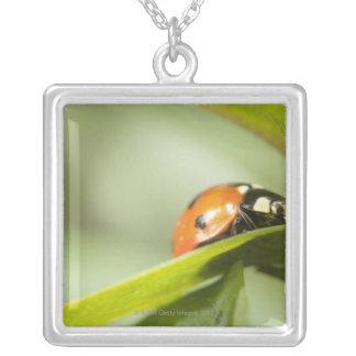 Ladybird on leaf,Ladybug on leaf Silver Plated Necklace