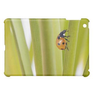 Ladybird on plant stems iPad mini cover