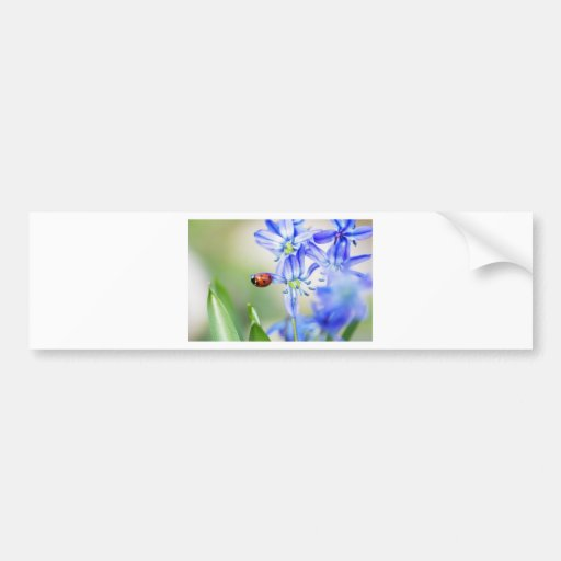 Ladybird on small blue stars in the garden bumper stickers