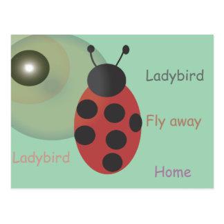 Ladybird Postcard