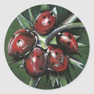 Ladybird Products Classic Round Sticker
