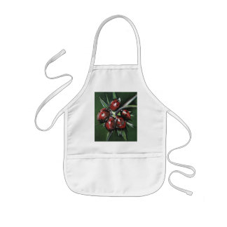 Ladybird Products Kids Apron