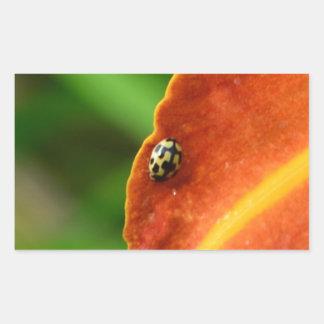 Ladybird Rectangular Sticker
