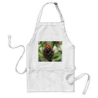 Ladybird - Standard White Apron