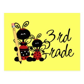 Ladybug 3rd Grade Tshirts and Gifts Postcard