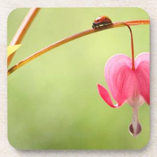 Ladybug and Bleeding Heart Flower Coasters