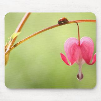 Ladybug and Bleeding Heart Flower Mousepad