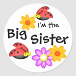 Ladybug and Flowers Round Sticker
