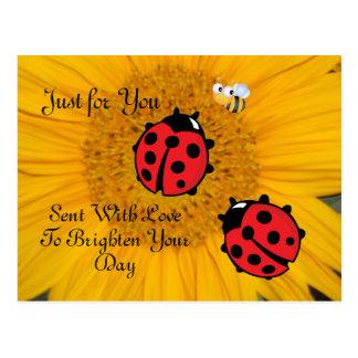 Ladybug Bee and Sunflower Postcard