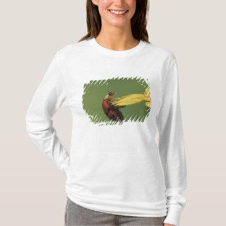 Ladybug Beetle, Coccinellidae, adult on flower, T-Shirt