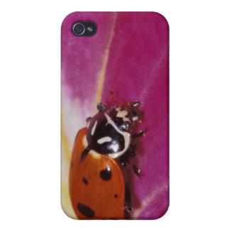 Ladybug Beetle. (Hippodamia convergens) Case For The iPhone 4