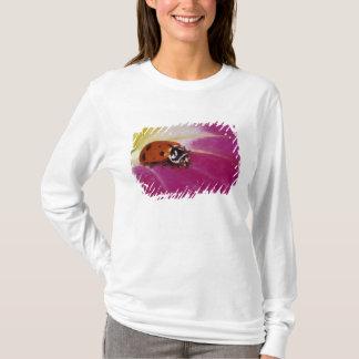 Ladybug Beetle. (Hippodamia convergens) T-Shirt