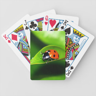 Ladybug Bicycle Playing Cards