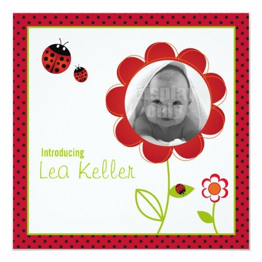 Ladybug birth announcement card