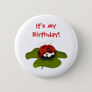 Ladybug Birthday Button