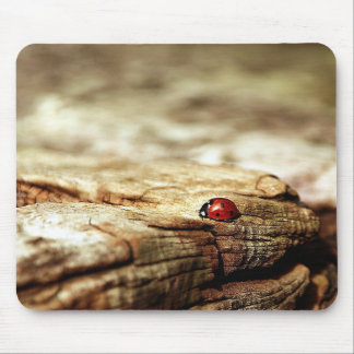 Ladybug Brown Nature Mouse Pad