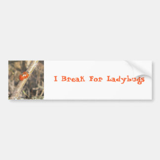 Ladybug Bumper Stickers