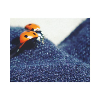 Ladybug Canvas Canvas Print