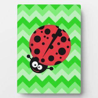 Ladybug Cartoon on Green Zigzag Plaques