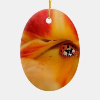 Ladybug Ceramic Oval Decoration