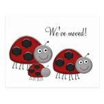 Ladybug Change of Address Cards Post Card