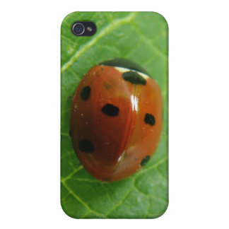 Ladybug  cover for iPhone 4