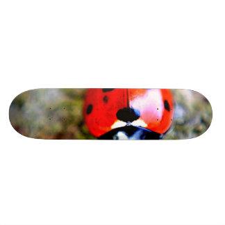 Ladybug Crawling on Tree Trunk Skate Board Deck