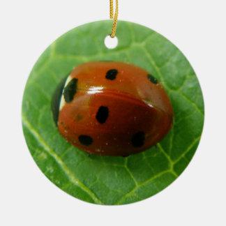 Ladybug Custom Birthday Christmas Ornament