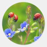 Ladybug Garden Round Sticker